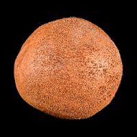 Pâine-neagră-cu-tărâțe